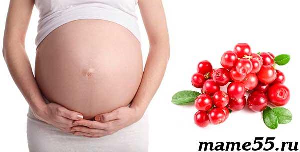 польза и вред клюквы при беременности