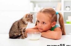 Домашние животные для детей: список и как выбрать питомца?