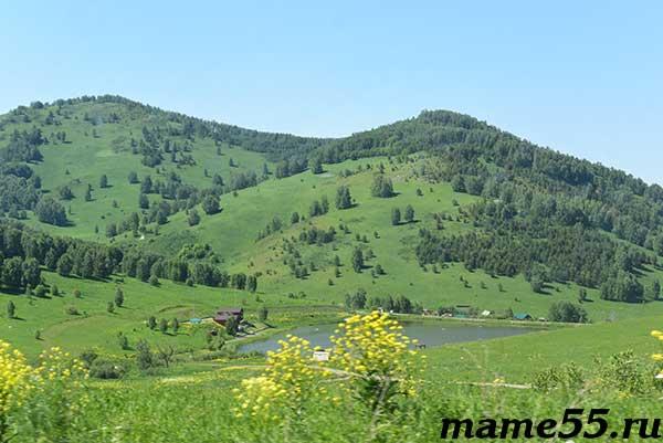 Дорога на пасеку в Горном Алтае